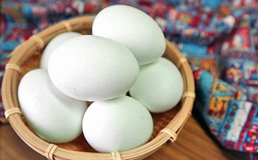 世界でただ一つ 殻の青い卵 アローカナ30個+-
