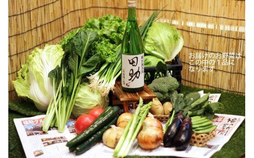 H0205三田産山田錦100%使用 オリジナル特別純米酒「田助」4合2本+自社農園の野菜セット