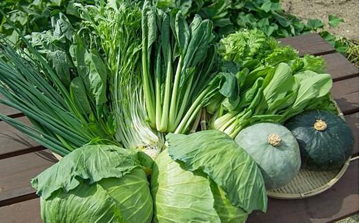 330.自然豊かな浜田市弥栄町で作られた「旬の野菜おまかせセット」(6回コース)
