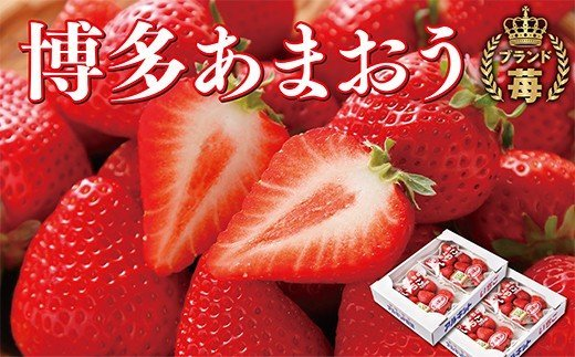 F17-02 自然農法アルギット農業「あまおう苺」(4パック)
