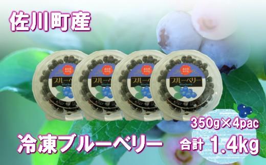 ブルーベリー(冷凍)1.4kg(350g×4P)