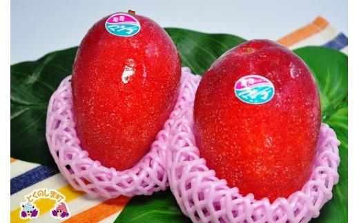 島の農家さんが愛情たっぷりに育てた自慢のマンゴーですよ。