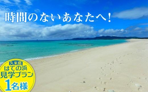 時間のないあなたへ!久米島はての浜見学プラン【1名】
