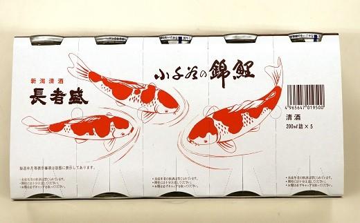 5個組のイラストも錦鯉です