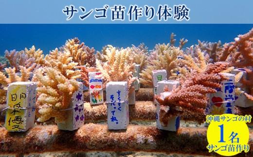 沖縄サンゴの村で『サンゴ苗作り体験』「1名様」