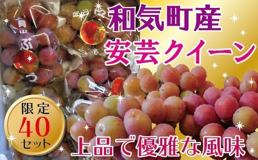 DD-28 安芸クイーン4~6房(約2㎏)