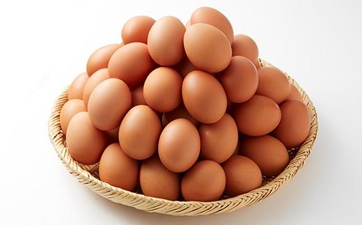 16-B 鶏卵(小美玉子)60ヶ入り