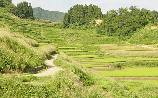 新潟県栃尾地域の風景
