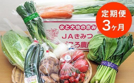 季節の野菜まごころBOX【月1回・計3回】+-
