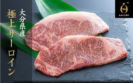 E4-46 片桐さんの「おおいた和牛」サーロインステーキ(200g×2枚)