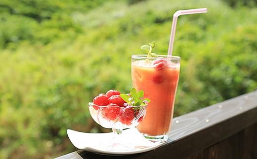 アセロラの実とジュースのイメージです。
