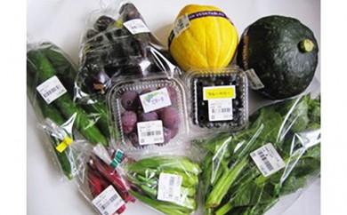 [№5570-0045]産直・旬の野菜&果物たち