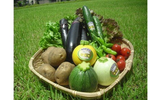 安全安心野菜セット