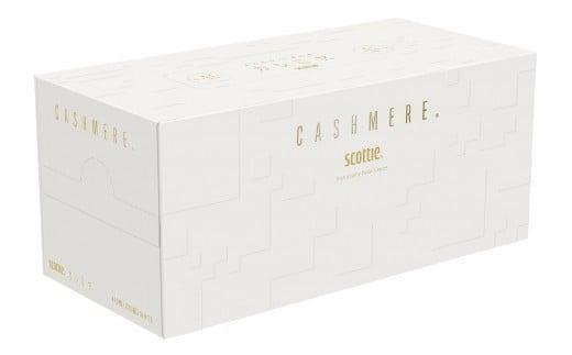 E3-1スコッティ カシミヤ20箱
