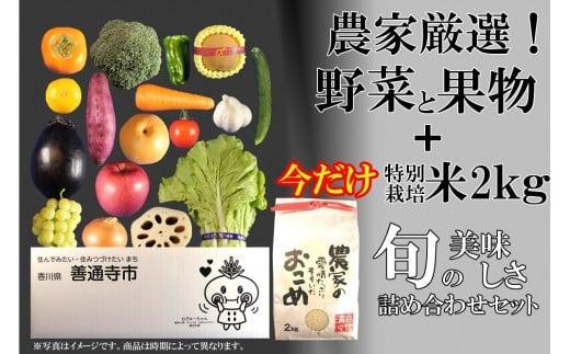 農家厳選!新鮮野菜と果実のセット(特別栽培米2㎏をお付けします!!)
