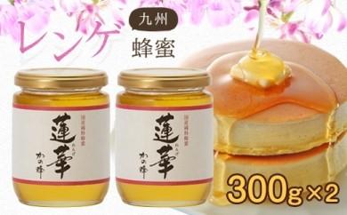 <国産>九州レンゲ蜂蜜【300g×2個】採蜜できる量が少ない貴重な純粋蜂蜜