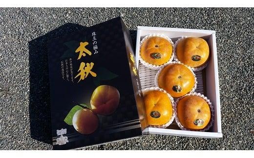 85-2 【予約受付】えのしまファーム 太秋柿 約2kg
