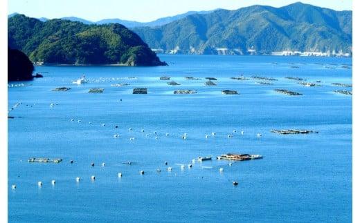 鯛やカンパチの養殖漁業が盛んです。