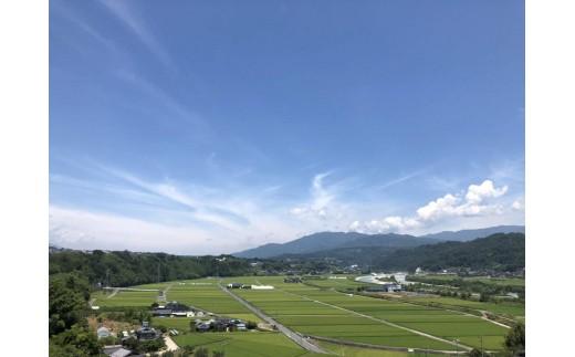 松川町前河原地区。ここで美味しいお米が育ちます。右手に見えるのが天竜川です。