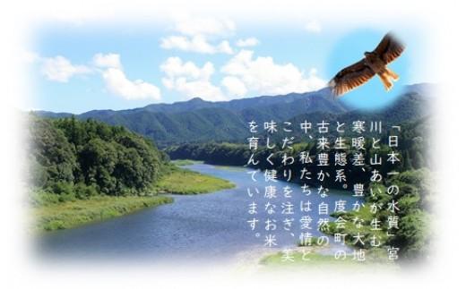 日本一の清流宮川に育まれています
