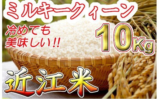 【2年産】近江米 ミルキークイーン 白米【10kg(5㎏×2袋)】 【V010SM-C】