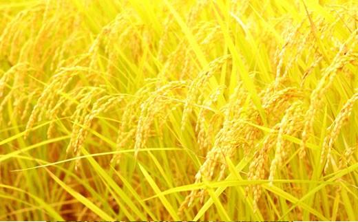 「特A米」山麓の特別栽培米<5kg:百笑村> SKM03
