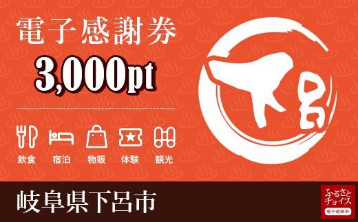 温泉・旅館・ホテルで使える!下呂市 電子感謝券 3,000ポイント
