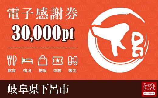 温泉・旅館・ホテルで使える!下呂市 電子感謝券 30,000ポイント