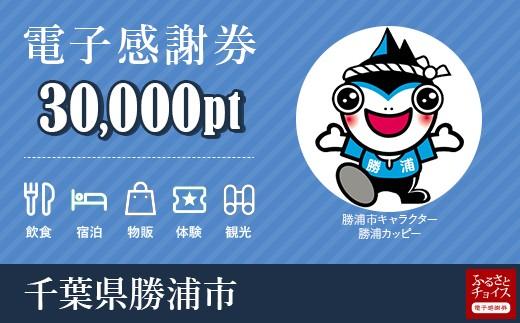 宿泊・食事・観光・遊びに使える!勝浦市 電子感謝券 30,000ポイント