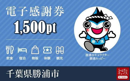 宿泊・食事・観光・遊びに使える!勝浦市 電子感謝券 1,500ポイント