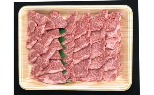 【おうちBBQ】30044 【希少部位】飛騨牛ヒレ切り落とし肉焼肉用500g