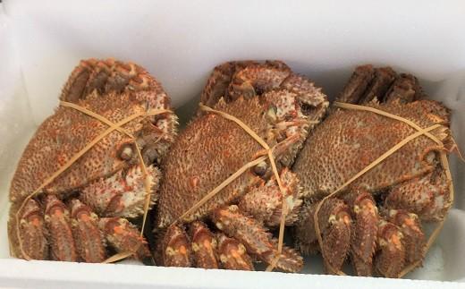 活きたままの毛がにを漁協の大釜で茹であげ急速冷凍してお届けします! ※写真はイメージです。