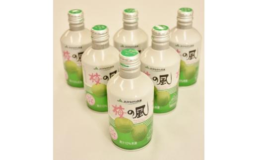 JAかながわ西湘 梅の風(清涼飲料水) 290ml×24缶