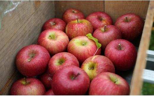 広大な敷地でりんごがたわわに実ります。フレッシュなジュースでリンゴそのものの美味しさをお楽しみください