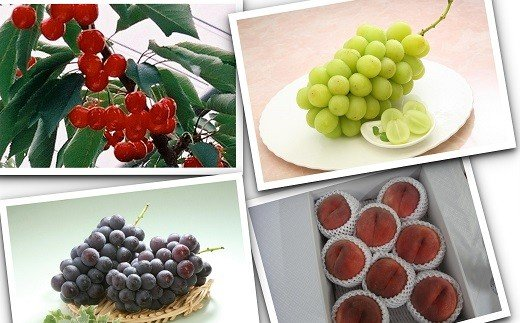 03J0040 夏の味覚 贅沢なフルーツの3ヶ月頒布会