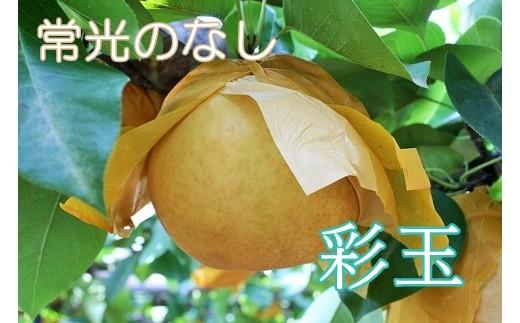 Q-10 【常光のなし】「彩玉」~鴻巣市産の梨~