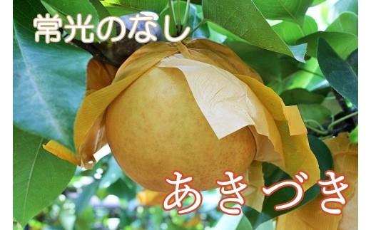 Q-11 【常光のなし】「あきづき」~鴻巣市産の梨~