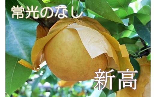 Q-12 【常光のなし】「新高」~鴻巣市産の梨~