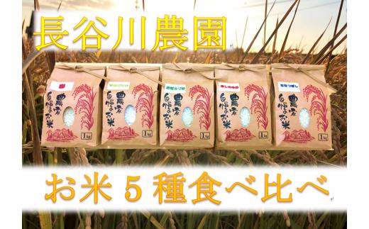 道の駅とうまセレクト「長谷川農園 お米食べ比べセット」