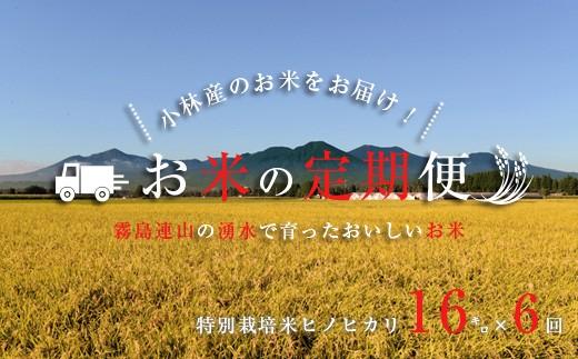 【定期便:全6回】「特A米」山麓の特別栽培米ヒノヒカリ<16kg×6回> SKM12