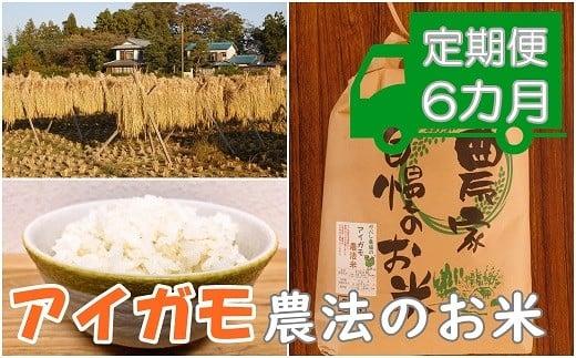 AA-5 【アイガモ農法のお米*定期便】ガバレ農場「大地の風」5kg×6ヶ月