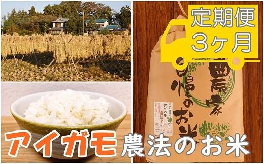AA-4 【アイガモ農法のお米*定期便】ガバレ農場「大地の風」5kg×3ヶ月