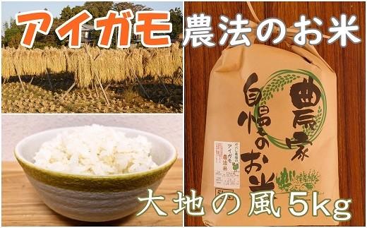 AA-3 【アイガモ農法のお米】ガバレ農場「大地の風」5kg