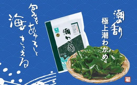 【010-020】塩蔵 潮わかめ150g×5袋