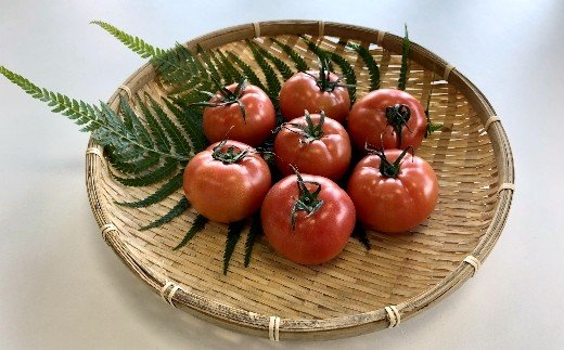 TMD03【味自慢の土耕栽培】海部清流トマト28玉セット (約4.2kg)