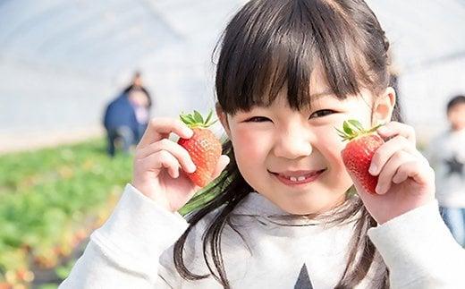 いちごにはビタミンCが豊富に含まれています。たくさん食べて、ウイルスへの抵抗力を高めましょう!
