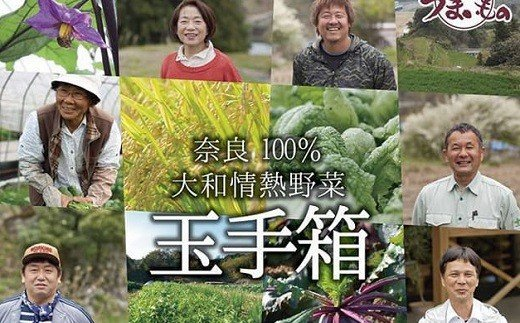 AC-8.【奈良の豊かさあふれる】大和情熱野菜 玉手箱