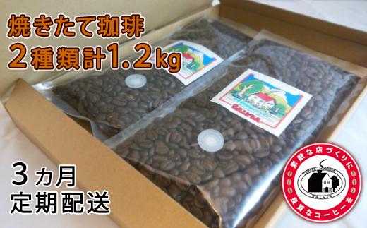 【020-009】まめーる定期便 珈琲豆200g×2パックの3回配送