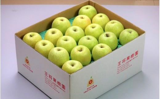 03B0341 りんご(王林)10kg