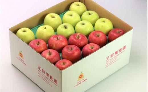 03B0376 りんご(サンふじ&黄色のりんご)10kg